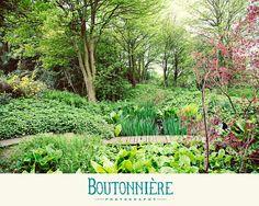 #boutonnierephotography a trip to doddington hall gardens!