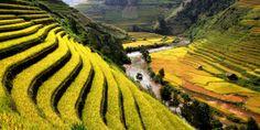 Victoria Sapa Resort & Spa (Lao Cai, Vietnam) - #Jetsetter