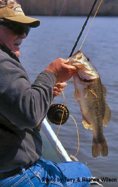 To Catch a Lunker Fly Fishing For Bass, Fishing Photos, Largemouth Bass, Fresh Water, Wildlife, Videos, Projects, Log Projects, Blue Prints