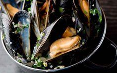 crm-mussels19-1920.jpg (1920×1200)