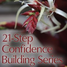 Confidence is a beautiful thing! Learn how to be confident. You can still be shy, introverted, and quiet but honey, you are confident! Don't believe otherwise.