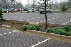 Znalezione obrazy dla zapytania bioswale parking