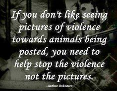 SPEAK OUT! DEMAND A CHANGE IN WELFARE LAWS FOR ANIMALS - ENFORCE PUNISHMENT! The incidents of horrifying animal abuse are increasing in frequency and severity! Current anti-cruelty laws and accompanying penalties are extremely deficient and cry out for major changes! It is time for our legislators to seriously address this rampant human savagery and implement meaningful legislation. ENOUGH SUFFERING! PLEASE SIGN AND SHARE WIDELY TO HELP END THIS HEINOUS CRISIS!