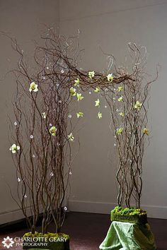 Wedding ceremony arch made of curly willow and green orchids Wedding Ceremony Ideas, Church Wedding Decorations, Flower Decorations, Wedding Centerpieces, Wedding Altars, Wedding Arches, Ceremony Backdrop, Floral Centerpieces, Green Orchid
