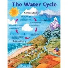 Image result for water cycle worksheets class 2 anvesha on this page you will find free printable worksheets and teaching resources for the water cycle ccuart Gallery