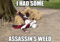 Leap of fail.Come on Ezio, you're better than this. The Assassin, Assassin's Creed Cosplay, Assassins Creed Memes, Assassin's Creed I, Video Game Memes, Video Games, Leap Of Faith, Gaming Memes, Parkour