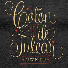 Coton de Tulear owner | Get Your Coton On