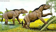 Art illustration - Prehistoric Mammals - Homalodotherium: is an extinct genus of placental mammals of the order Notoungulata who lived in the Miocene, about 20 million years ago in Argentina and Chile.