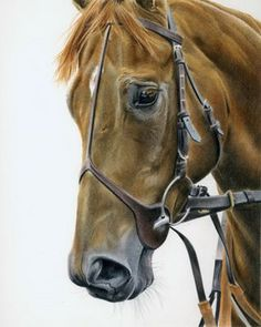 I love the kind eye in this drawing.  On Parade  by Laura Hardie