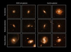The Most Remarkable Black Holes