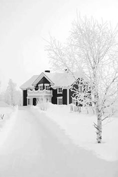 Gorgeous snow covered house
