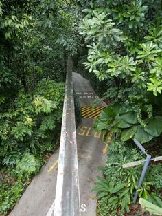 Start of the Imbiah Trail, Sentosa, Singapore