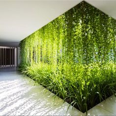 How is light controlled in contemporary architecture? In MIA Design Studio's Naman Pure Spa in Da Nang, Vietnam, the vegetal walls filter the sunlight to create a clear and breathable atmosphere around the corridors of the spa.