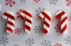 Learn how to make peppermint schnapps jello shots that look like mini candy canes with this easy to make recipe. This layered alcoholic peppermint flavored gelatin is great for any Christmas party. Christmas Jello Shots, Best Christmas Cocktails, Holiday Drinks, Fun Cocktails, Party Drinks, Holiday Treats, Fun Drinks, Christmas Goodies, Christmas Candy