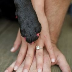 Here's a perfect way to incorporate your loved pets in your special photo shoots! #weddinggawker