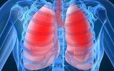 """#pósgraduaçãoNEWS #saúde #medicina #câncer #vacina #faculdaderedentor  Cuba desenvolve vacina contra o câncer de pulmão -  Consultado sobre a novidade, o Câncer Research UK - órgão especializado em câncer, no Reino Unido - celebrou a notícia, porém pediu cautela: """"este estudo foi feito com apenas 12 pessoas. É um número pequeno para tirar qualquer conclusão definitiva""""."""
