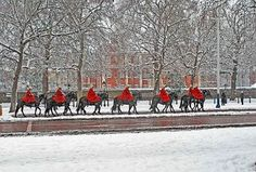 Horse Guards in the Snow