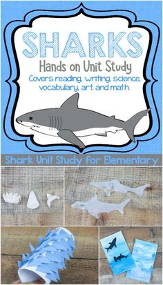 Handson Shark STEAM Unit Study for Fun Shark Learning is part of Science Education Unit Studies - Ready to learn about sharks using hands on and memorable activities Look no further, it's all planned out for you here in this engaged shark unit study! Shark Activities, Science Activities For Kids, Educational Activities, Learning Resources, Preschool Ideas, Teaching Ideas, Summer School Themes, Summer School Activities, Sharks For Kids