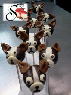 Dog lollicakes! Made from scratch just like everything else! - Sweets on the Square in Lawrenceville, GA