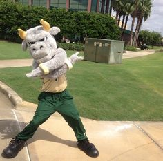 Rocky showing off his dance moves. #USF