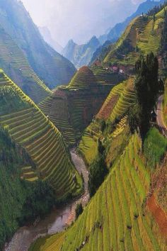 Rice Terraces in Mù Cang Chải District, Vietnam