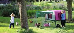 New Eglu Cube Chicken Coop | Chicken Keeping Equipment | Omlet