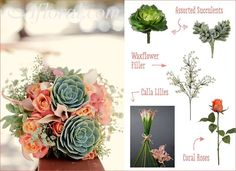 Coral Roses and Succulents