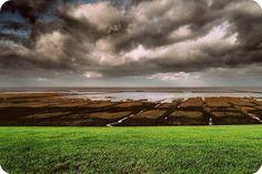 Wadden Sea by Michiel Thomas