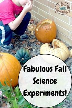 Awesome science experiments to do with the kids this Fall! These Autumn science activities are so cool and surprisingly easy. Great for really little kids like toddlers and preschoolers as well! Creative Activities For Kids, Kids Learning Activities, Autumn Activities, Science Activities, Science Projects, Toddler Science Experiments, Elementary Science, Toddler Preschool, Toddlers