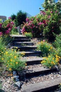 Whimsical Garden Paths & Walkway Ideas - Simple and Affordable Wooden Garden Path Ideas 3 …of stepping stones of dirt or of grass. Path Design, Landscape Design, Garden Design, Design Ideas, Landscape On A Slope, Steps Design, Desert Landscape, Sloped Backyard, Sloped Garden
