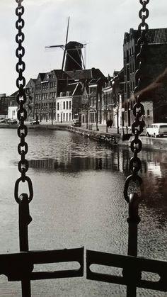 Schiedam 1963