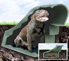 1000 images about dog house on pinterest dog houses end tables and dog beds - Underground dog houses ...