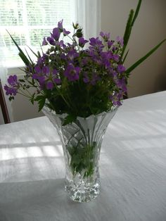 Kesän kukkia