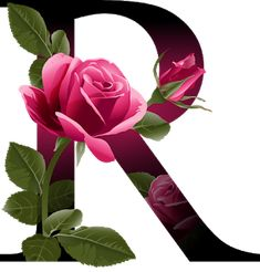 Letter R vector alphabet with rose flower ABC concept type as logo Typography design - Shutterstock Alphabet Design, R Letter Design, Alphabet Wallpaper, Name Wallpaper, Lettering Design, Hand Lettering, Design Logo, Inspiration Logo Design, Flower Alphabet