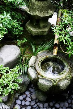 Japanese lantern and fountain