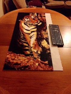 """Unbelievable work by """"Bead Pictures"""" on Facebook! 22,000 Hama Beads and only THREE days work? That's one crazy cat!"""