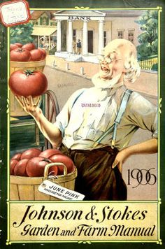 Garden and farm manual / Johnson  Stokes :: Nursery and Seed Catalogs