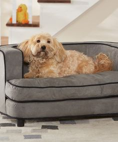Another great find on #zulily! Gray Davenport Sofa Pet Bed #zulilyfinds