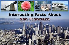 Interesting Facts About San Francisco https://mentalitch.com/interesting-facts-about-san-francisco/
