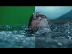 CGI VFX Breakdown Full HD: Harry Potter DH Part 2 by Baseblack Visual Effects, Special Effects, Cgi, Motion Graphics, Screens, Filmmaking, Behind The Scenes, Cool Pictures, Videos