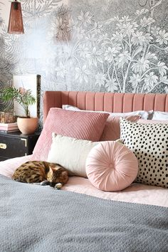 Home Interior Design Pink bedroom with cat on bed and black and white wall mural Pink Cushions, Bed Cushions, White Pillows, Colourful Cushions, Pink Bedding, Decorate Your Room, My New Room, White Walls, Room Inspiration