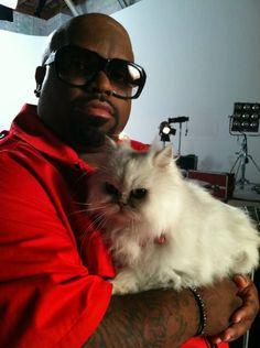 Cee Lo Green phrase is: BUHAHAHAHAHAHA IM EVIL 'CAUSE I HAVE A CAT HA HA HA HA