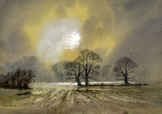 """Flooded Fields Herefordshire"" by David Bellamy"