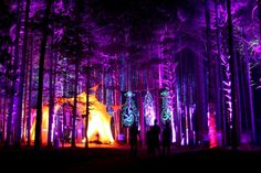 Electric Forest.. I've heard many great things about this place.