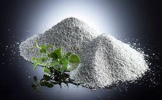 Vai trò của khoáng chất trong khẩu phần ăn của con... | Mạng Thủy sản Việt Nam