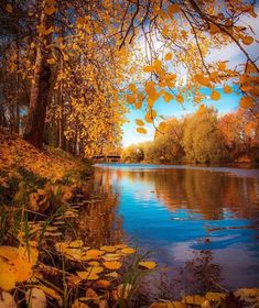 Autumn down by the river in Lapua, Photo by Explore. Fall Images, Fall Pictures, Fall Photos, Great Photos, Beautiful World, Beautiful Places, Beautiful Scenery, Dream Images, Autumn Scenery