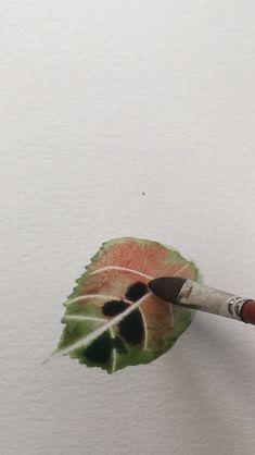 sabine464_watercolor_artist on Instagram: -Simple Watercolor Leaves -With brush skills and blotting Paper Brush: @davinci_artistbrushes_official Cosmotop Spin 5584 Nr 14 Paper:… Simple Watercolor, Watercolor Leaves, Ceramic Supplies, Blotting Paper, Spin, Ceramics, Artist, Instagram, Kunst
