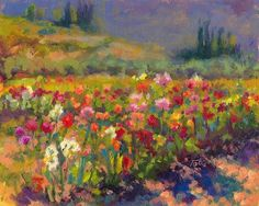 """""""Dahlia Row"""" by Talya Johnson I never tire of standing in the ever-changing flower fields of this beautiful family-owned farm."""