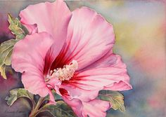 Marianne Broome WATERCOLOR