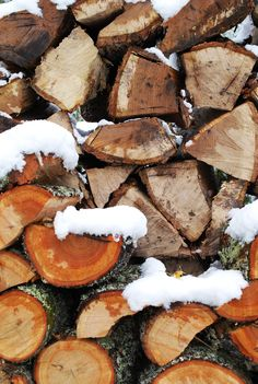 Snow dusting the wood pile at Hubba Hubba Smokehouse